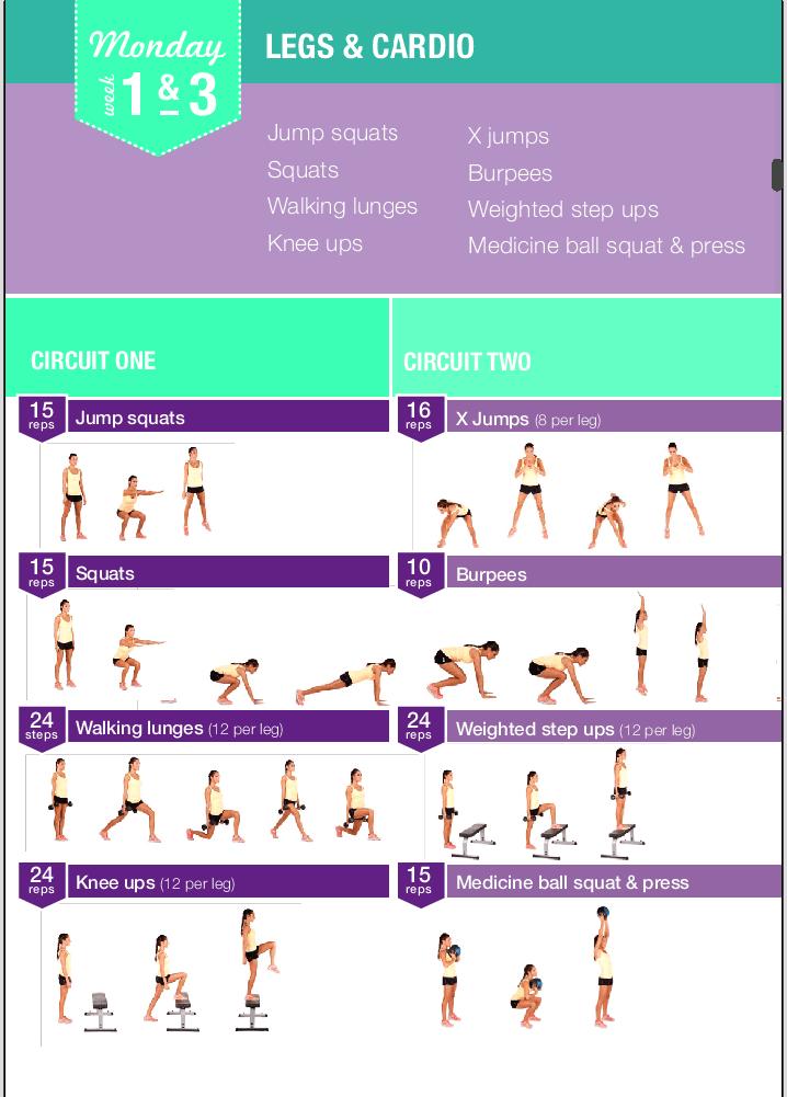 bikini body guide kayla pdf free